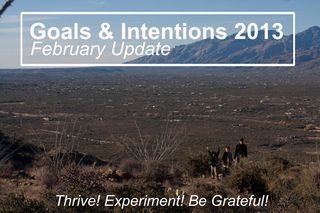 Goals&IntentionsLogo2013web