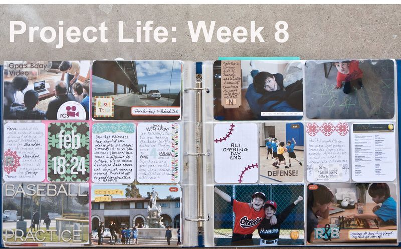 Project Life Week 8-2