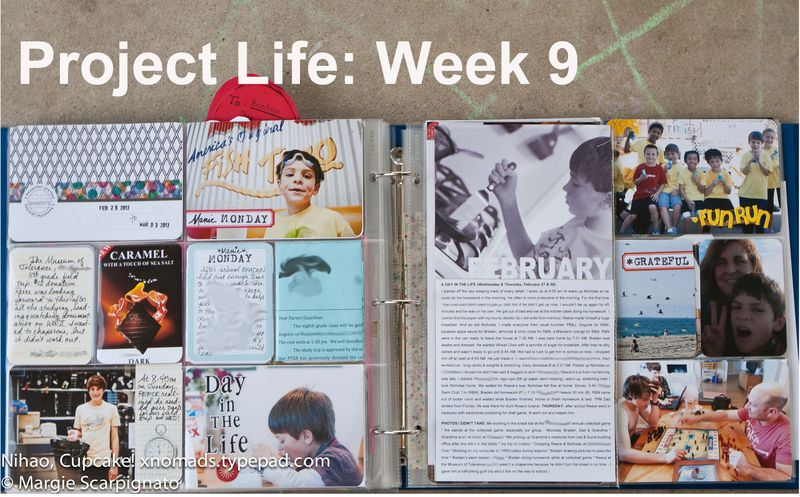 Project-Life-Week-9web