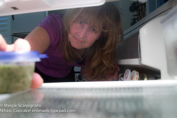 xnomads.typepad.com self-portrait 4 refrigerator