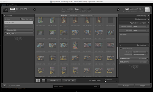 Screen shot Adobe Lightroom Import Window