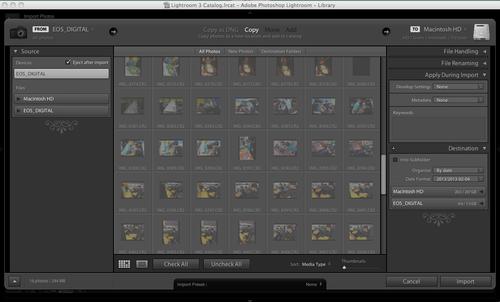 Screen shot Adobe Lightroom Import Window