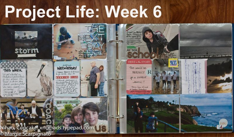 Project Life Week 6-2