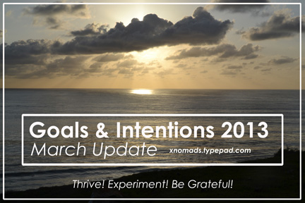 Goals & Intentions 2013 March xnomads.typepad.com