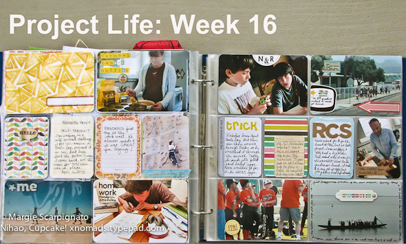 Project Life 16-2